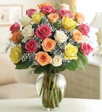 Ultimate Elegance Long Stem   36 Assorted Roses