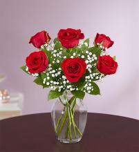 Love's Embrace™ Red Roses
